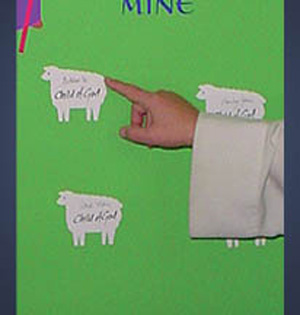 Extra Sheets Of 12 Sheep For Baptism Banner